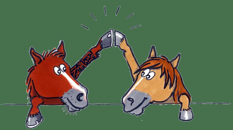 Über Uns - HUFWERK - staatlich anerkannter Hufschmiedebetrieb - Marcel und Kati Jurth
