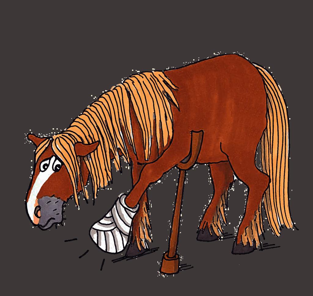 Pferd an Krücken